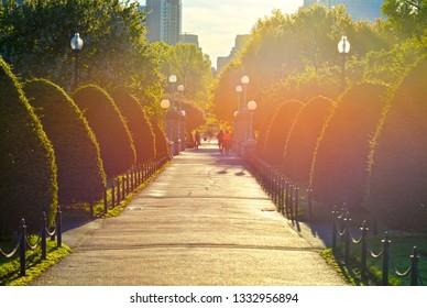 Boston Public Garden at sunrise. People crossing lagoon bridge