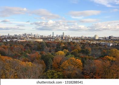 Boston Skyline from Mount Auburn