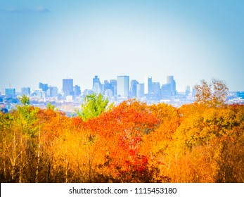 Boston skyline panoramic image behind the orange, yellow, and red leaves during foliage in the Blue Hills Reservation natural park. Foliage in New England, Massachusetts. Photo with selective focus.