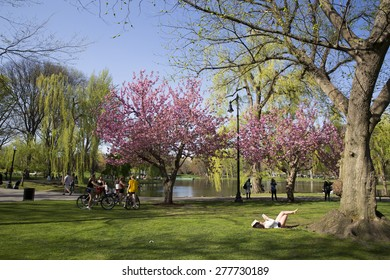 BOSTON,MASSACHUSETTS/US-MAY 6: Boston Public Garden with first signs of spring in Boston may 6 2015. Boston Public Garden is perhaps the main public park in the Back Bay area of Boston.