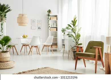 Botanic dining room interior with retro armchair, rattan lamp above table, white chairs and lots of plants