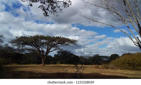 Botanical Garden, Harare, Zimbabwe