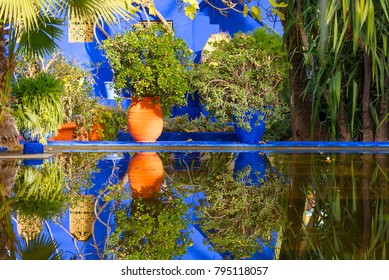 Botanical garden Jardin Majorelle in Marrakesh or Marrakech in Morocco