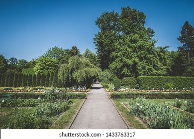 botanical garden in Krakow in Poland