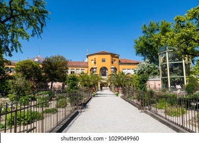 Botanical garden in Padua, the oldest in the world. Italy
