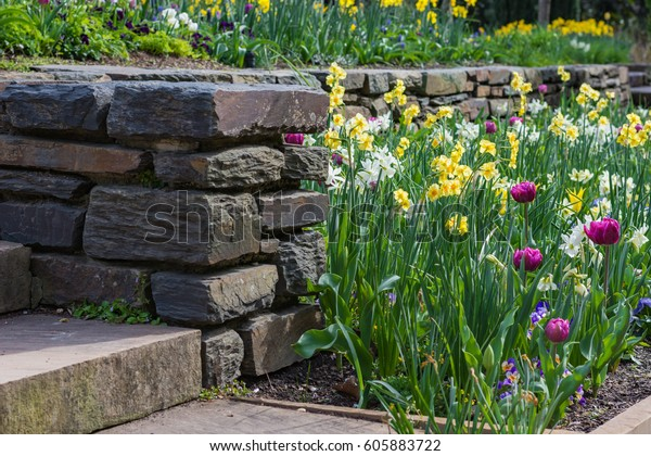 Botanical Garden Planting Spring Flowers By Stock Photo