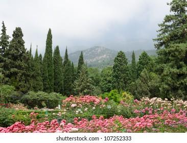 Botanical garden (Ukraine, Crimea, Yalta)