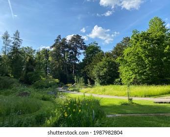 The Botanical Garden of the University of Zurich or Botanischer Garten der Universität Zürich (Botanischer Garten der Universitat Zurich - Botanischer Garten der Universitaet Zuerich), Switzerland - Shutterstock ID 1987982804