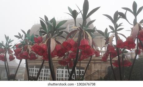 botanical garden in vetnam