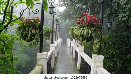 botanical garden in vietnam