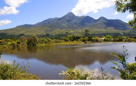 Botanical Gardens in George with the Outeniqua Mountains in the background, Garden Route, South Africa
