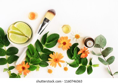 Botanical herbal beauty treatment, soothing blossom of calendula, green fresh lime, essential oils. Making cosmetics plant ingredients top view set.