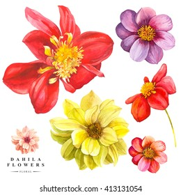 Botanical illustration with realistic tropical plants and leaves. Watercolor collection of red and yellow dahlia flowers. Handmade painting on a white background.