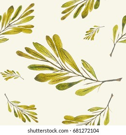 Botanical seamless pattern Floral watercolor background with leaves