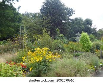 Botanika in Bremen (park, garden) - Shutterstock ID 2002399610