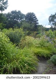 Botanika in Bremen (park, garden) - Shutterstock ID 2002399613