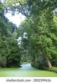 Botanika in Bremen (park, garden) - Shutterstock ID 2002399616