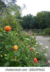 Botanika in Bremen (park, garden) - Shutterstock ID 2002399622