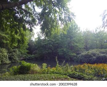 Botanika in Bremen (park, garden) - Shutterstock ID 2002399628