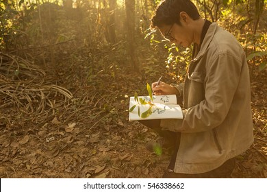 Botanists are taking note of the plants found in the tropical forests. (Light and optics Fair)