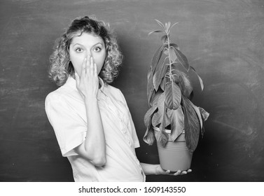 Botany is about plants flowers and herbs. Take good care plants. Plants that sure stress relief home and provide you with sanctuary of peace and tranquility. Florist concept. Girl hold plant in pot.