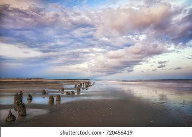 Botany Bay Boneyard Beach Edisto Island Charleston South Carolina SC Lowcountry