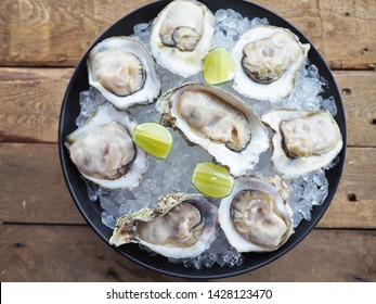 Both hands holding fresh gigantic oysters on ice with yellow lemon in the black bowl on the wooden table with fresh herbs