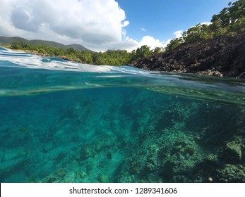 Both over and under the water, Coastline of the Caribbean, Basse Terre, Guadeloupe, French Caribbean.