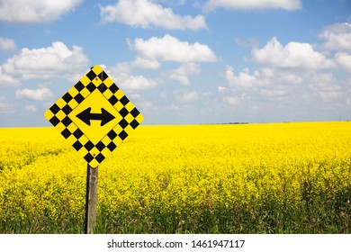 Both ways road sign in Canada, wih beautiful blossoming canola field in the background