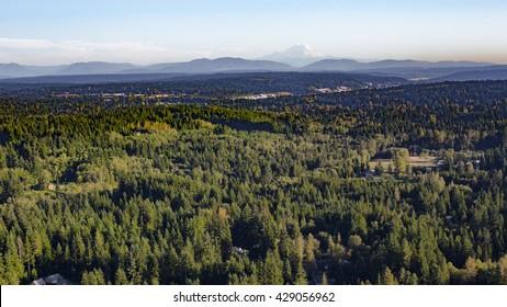 Bothell Mill Creek, Washington Suburban Forest Aerial - Mount Rainier and Cascade Mountains Backdrop