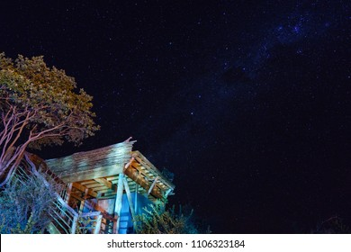 """Botswana starry night sky with Milky Way visible. Illuminated tree and timber """"sleep out"""" platform in the foreground."""