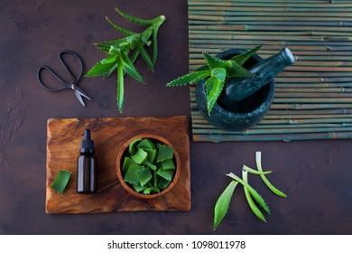 bottle of aloe vera essential oil with fresh aloe - beauty treatment