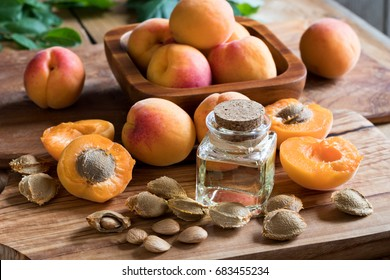 A bottle of apricot kernel oil with apricot kernels and ripe apricots on a wooden table