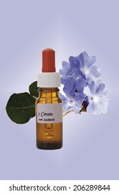 Bottle with Bach Flower Stock Remedy, Leadwort (Ceratostigma)