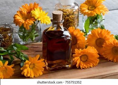A bottle of calendula (marigold) tincture, with fresh and dry calendula flowers in the background