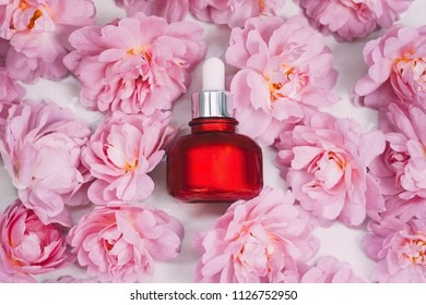 A bottle of emulsion for face care among pink rose buds. Top view.