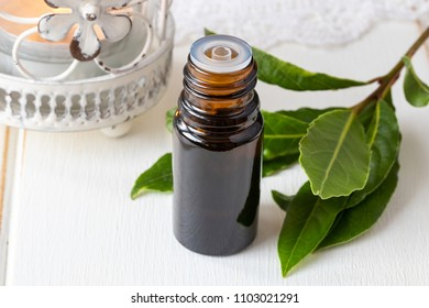 A bottle of essential oil with fresh bay leaves on white background