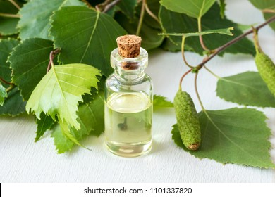 A bottle of essential oil with fresh birch branches on white background