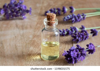 A bottle of essential oil with fresh blooming lavender twigs and copy space