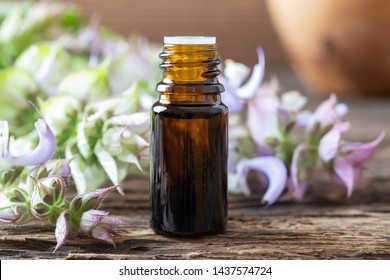 A bottle of essential oil with fresh blooming clary sage twigs