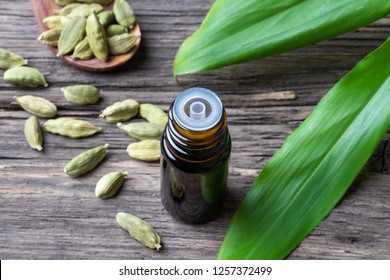 A bottle of essential oil with fresh cardamon plant and whole seeds