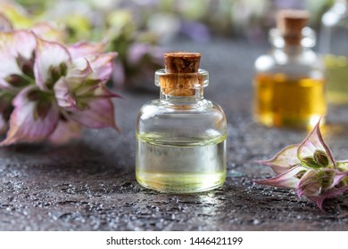 A bottle of essential oil with fresh clary sage