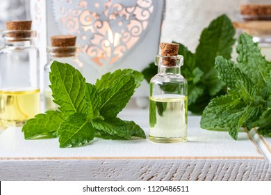 A bottle of essential oil with fresh peppermint twigs on white background