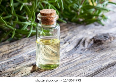 A bottle of essential oil with fresh rosemary in the background