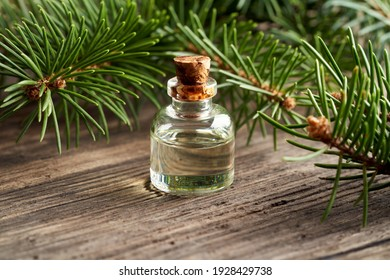A bottle of essential oil with fresh spruce branches