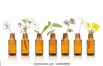 Bottle of essential oil with herbs holy flower. Natural remedies, aromatherapy - bottle.