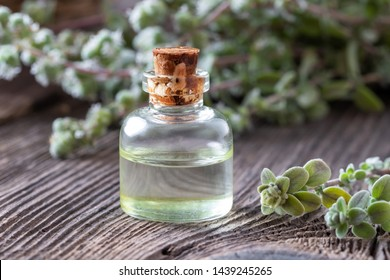 A bottle of essential oil with marjoram plant on a table