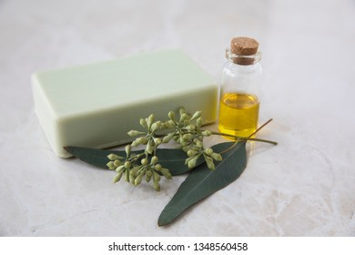 Bottle of eucalyptus oil with bar of soap and leaves.