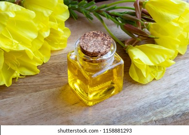 A bottle of evening primrose oil with fresh blooming plant on a wooden background