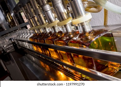 Bottle filling line in tequila factory